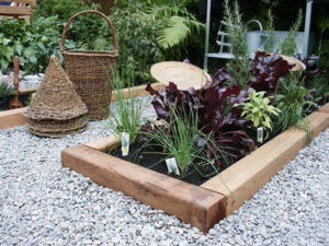 Kitchen Garden   Vegetable Garden